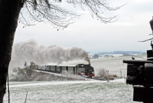 oechsle_winter-1_baum